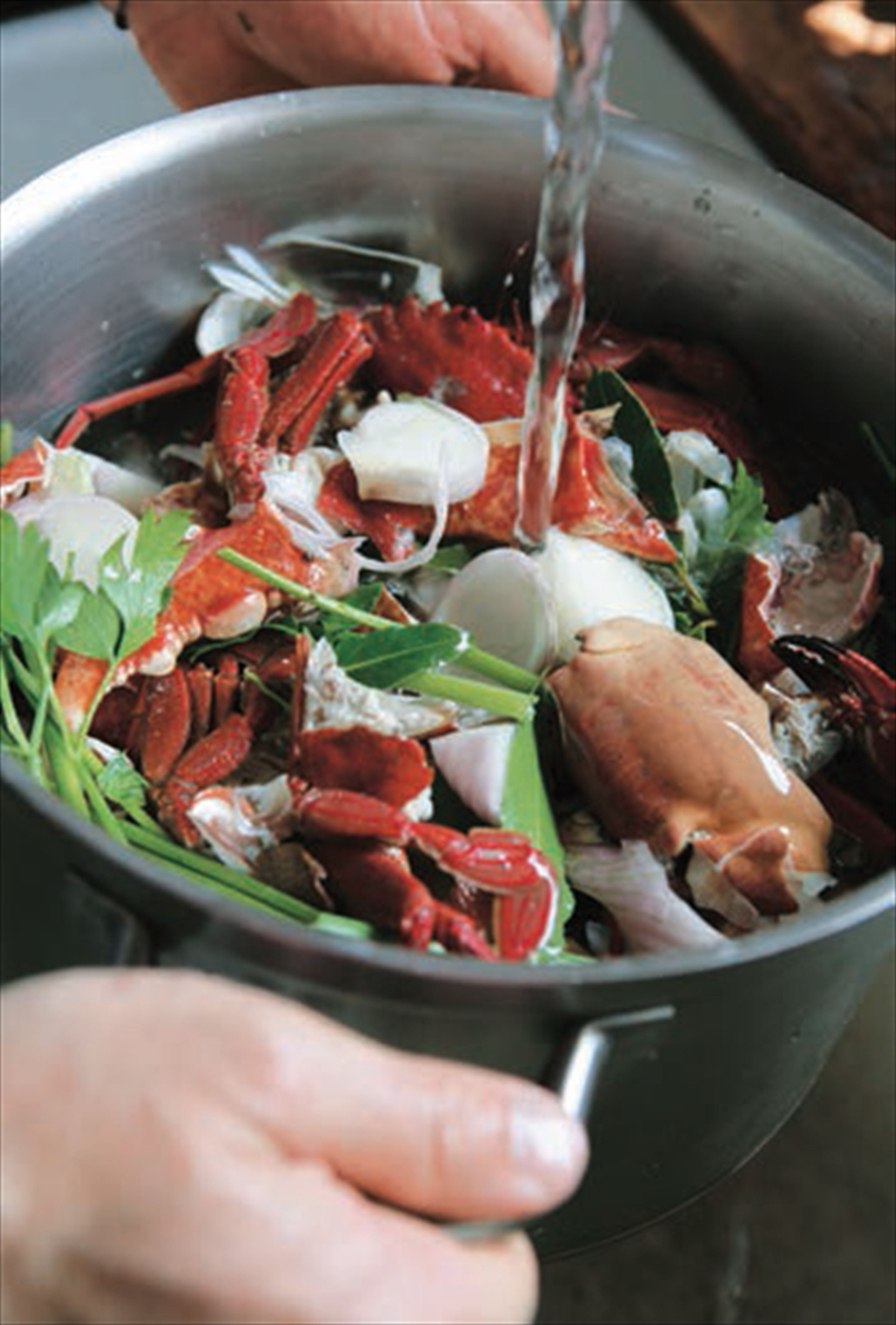 Shellfish stock