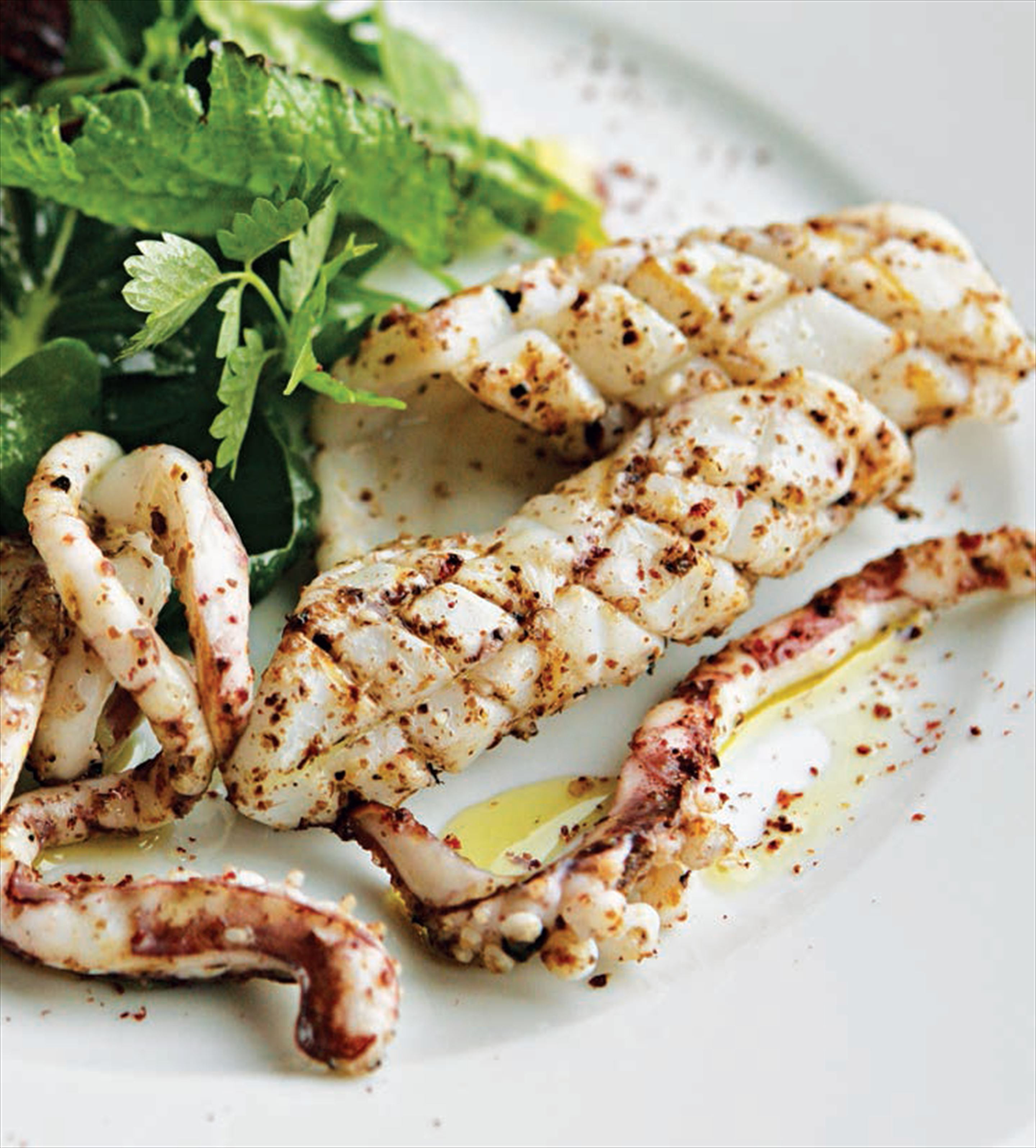 Seared squid