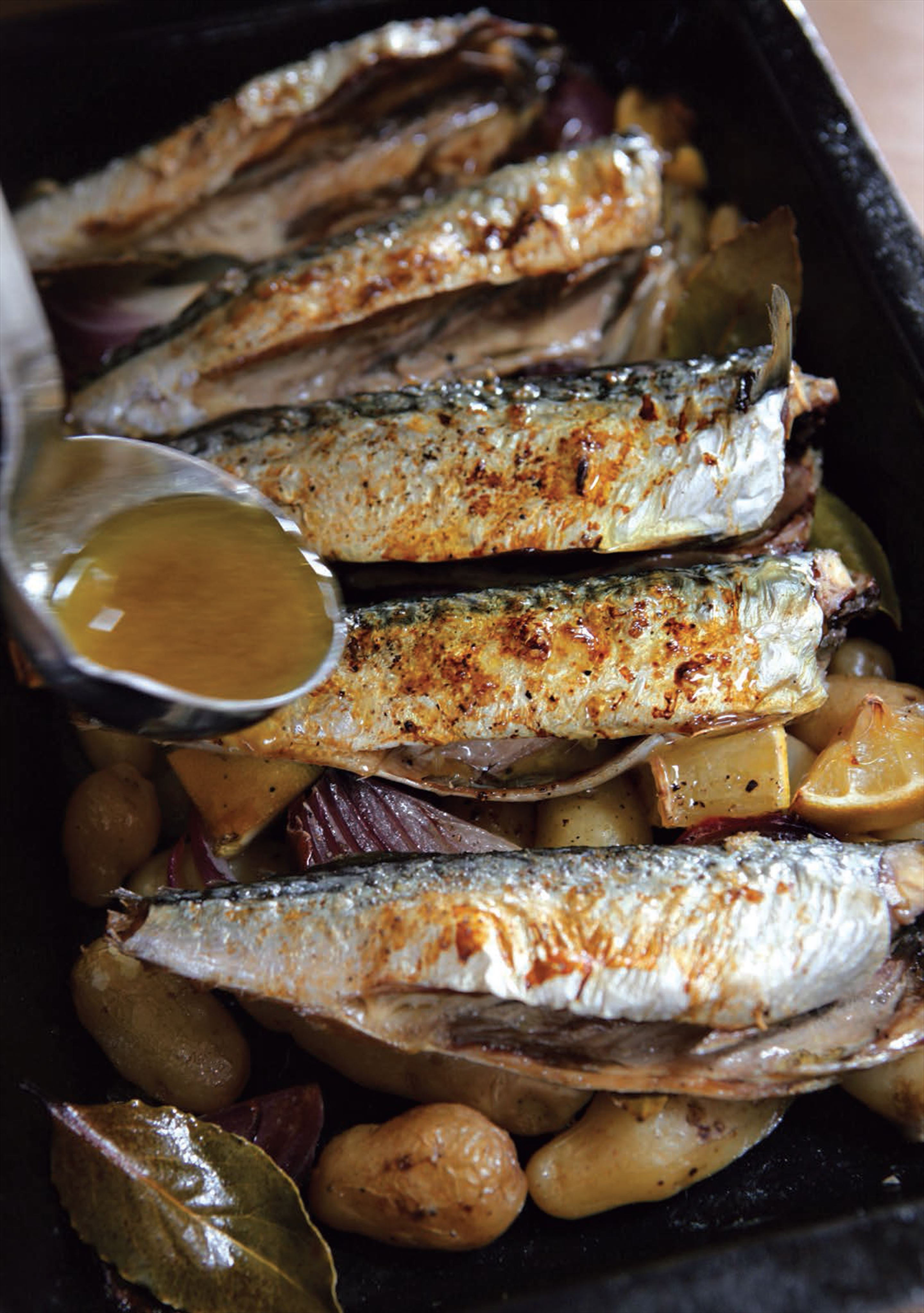 Mackerel on potatoes and bay