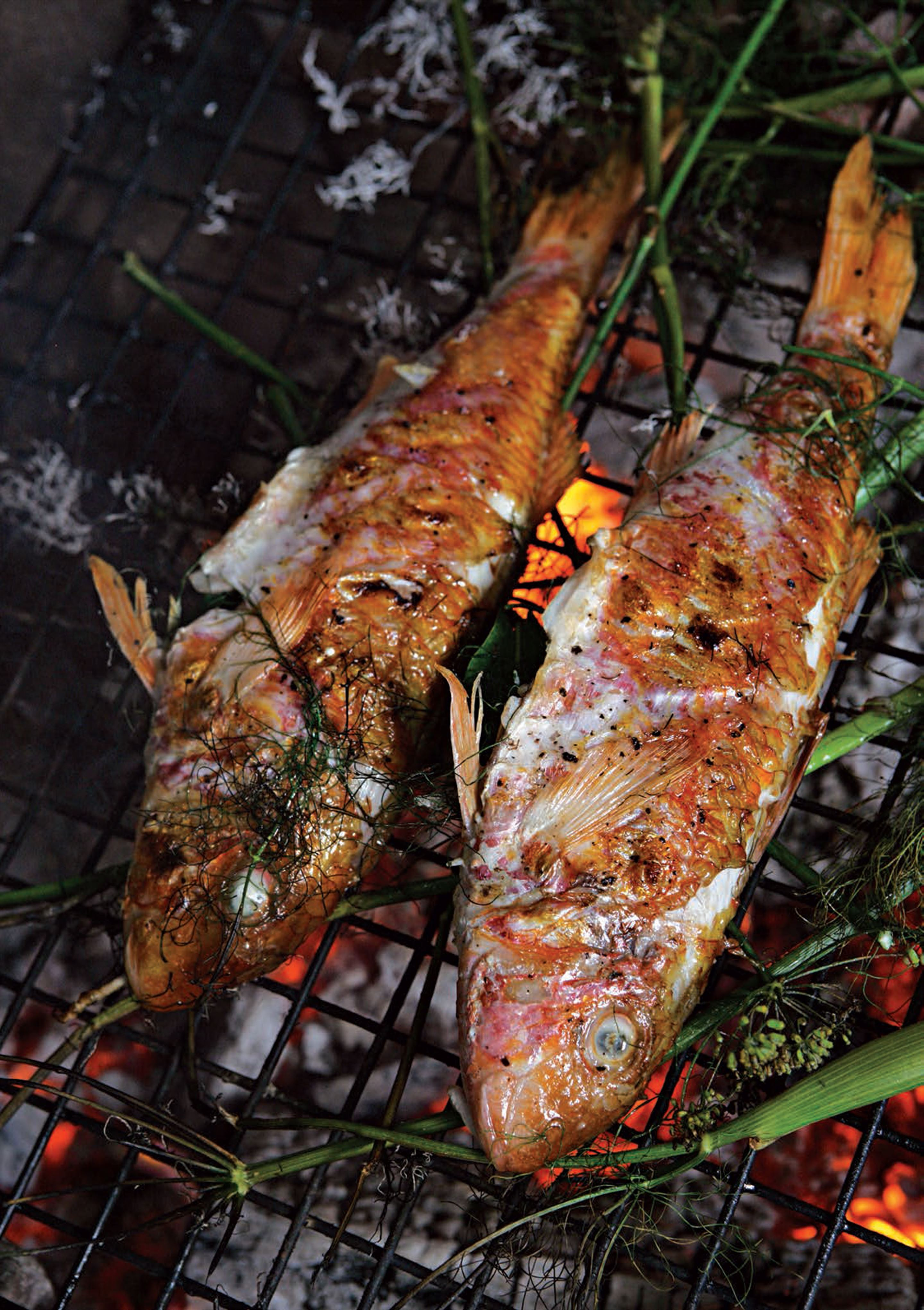 Barbecued red mullet with fennel