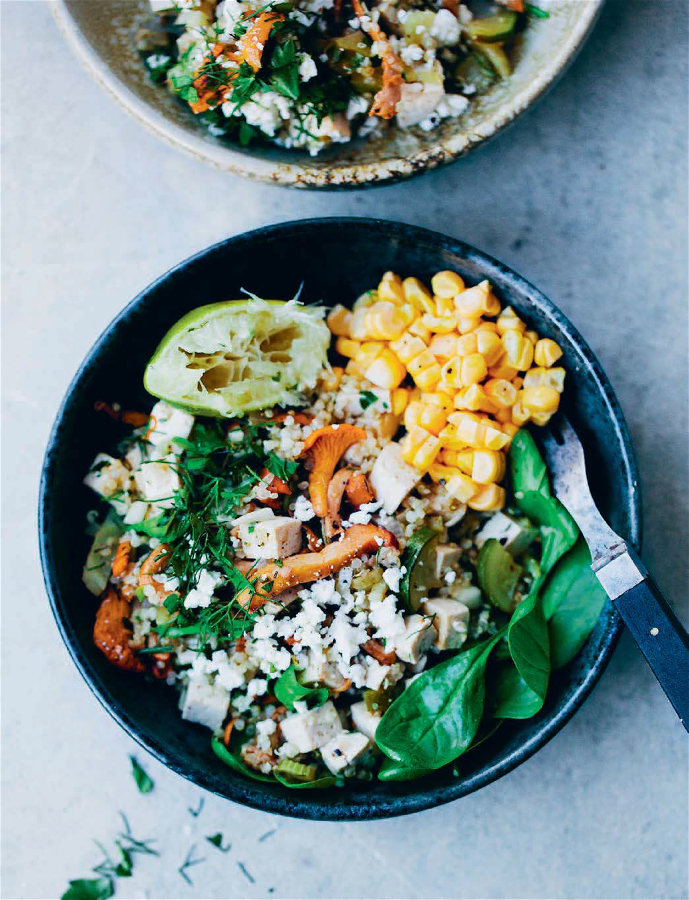 Chanterelle, Quinoa and Tofu Stir-fry