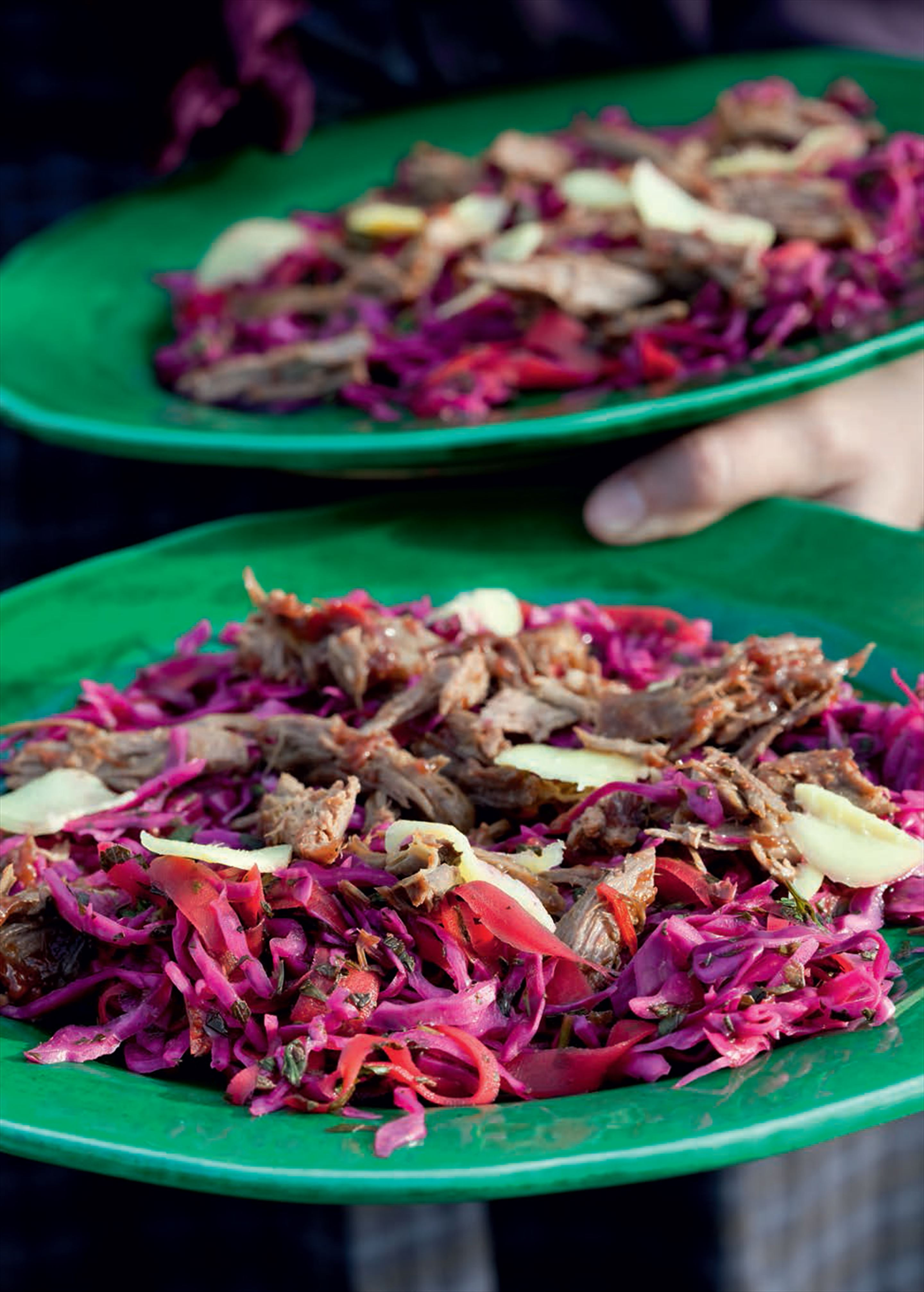 Duck and red cabbage salad with fragrant plum sauce