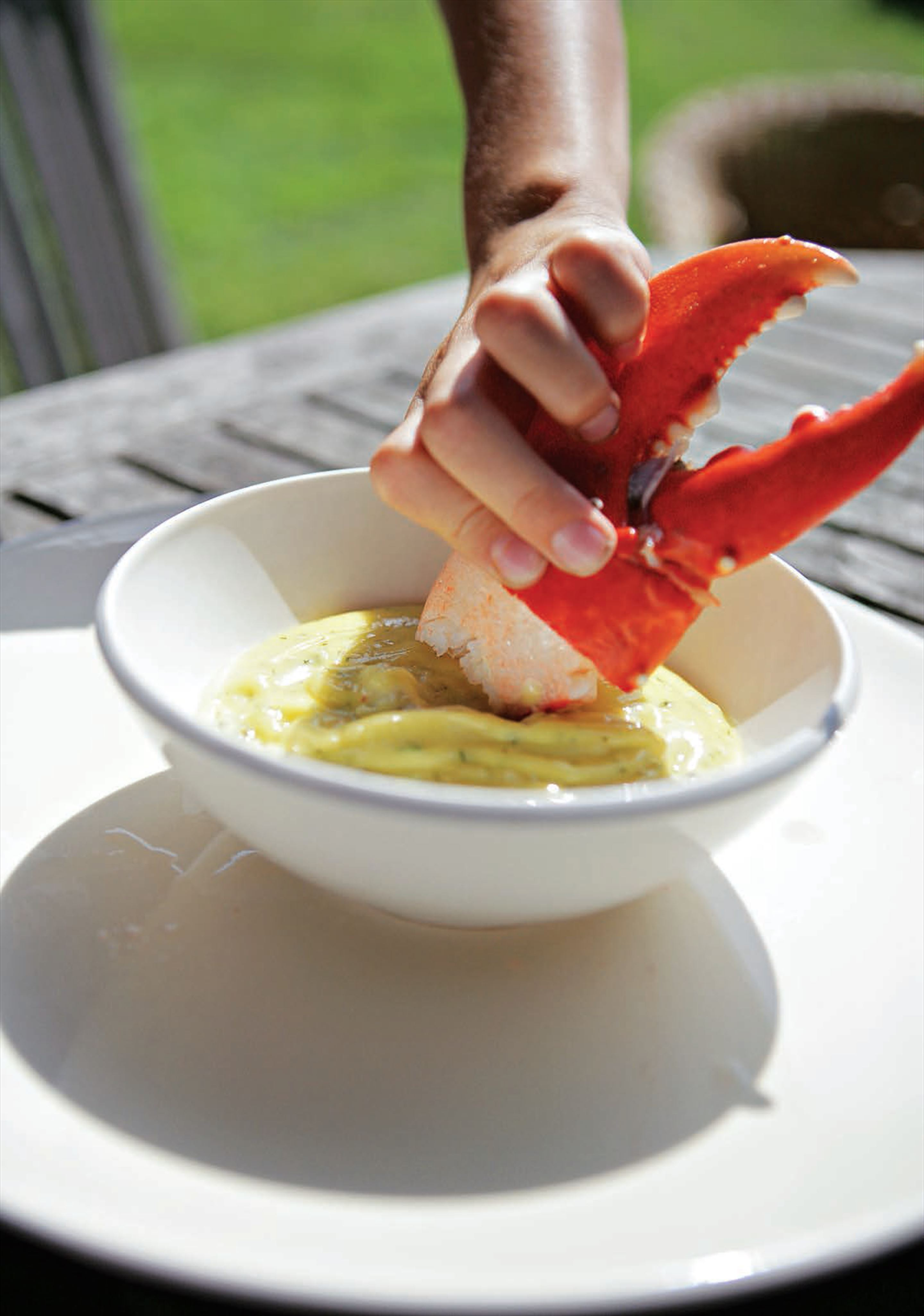 Lobster with herb mayonnaise