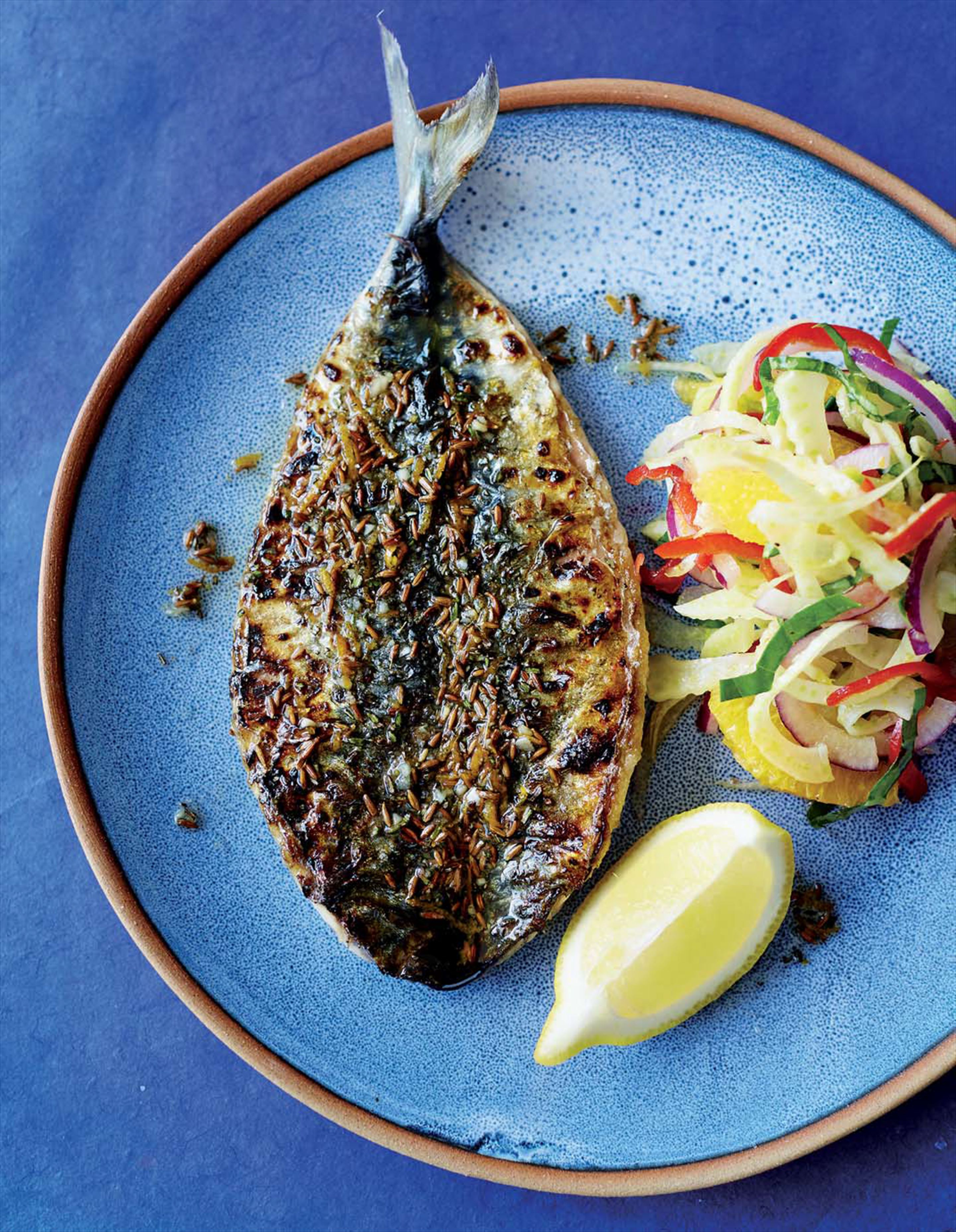 Barbecued mackerel with fennel, red onion and orange salad