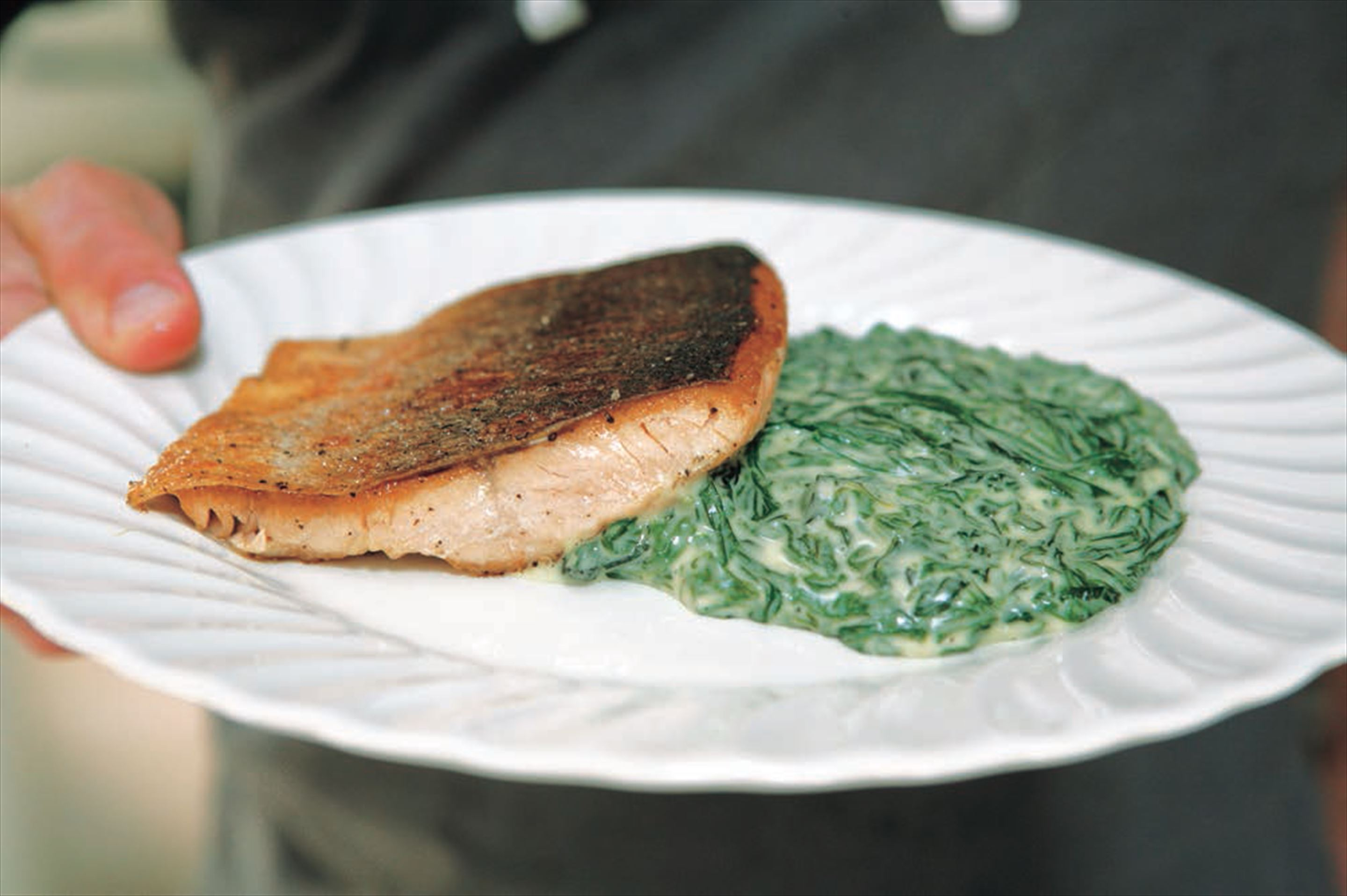 Sea trout fillet with sorrel sauce